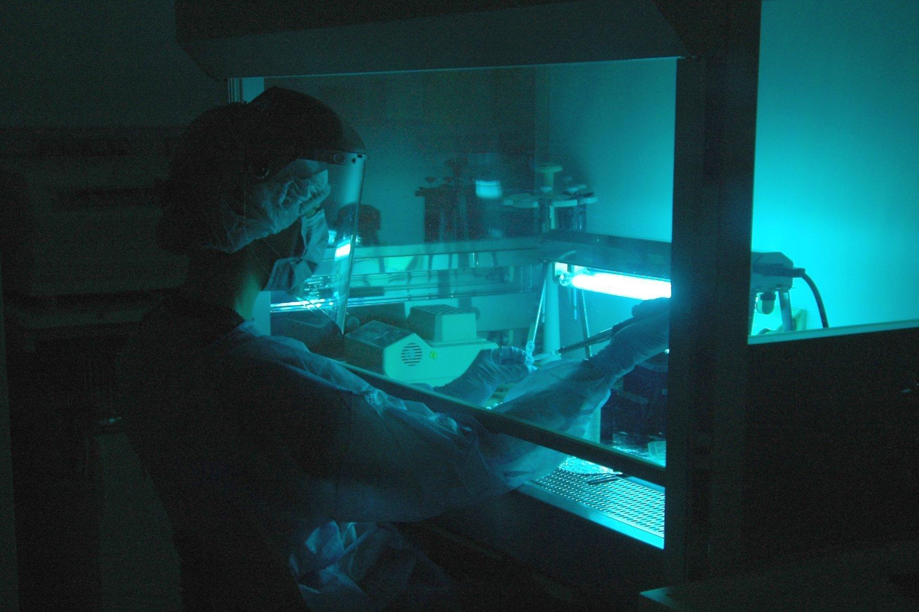 Im schummerigen, bläulichen Licht eines Labors arbeitet eine Forscherin, die mit weißem Kittel, Handschuhen, Haarhaube und Mundschutz ausgestattet ist. Höchste Reinheit ist Voraussetzung bei der Analyse uralter Erbsubstanz am Max-Planck-Institut für evolutionäre Anthropologie in Leipzig. Die Analysen ergaben: Ein von Neandertalern stammendes Stück Erbsubstanz sorgt bei heutigen Menschen dafür, dass eine Corona-Infektion einen besonders schweren Verlauf nehmen kann.