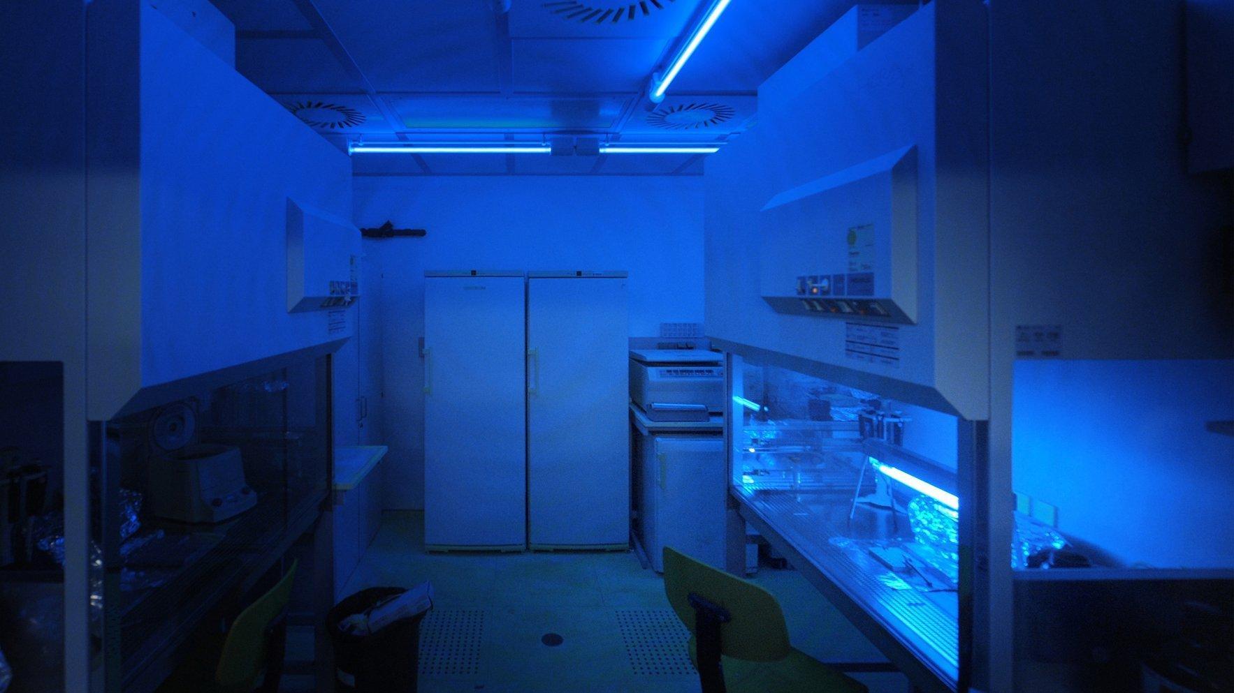 In geheimnisvollen Blautönen strahlt das Labor im Max-Planck-Institut für evolutionäre Anthropologie in Leipzig. Hier können Forscher das Erbgut der Jahrtausende alten Knochen von Urmenschen analysieren.
