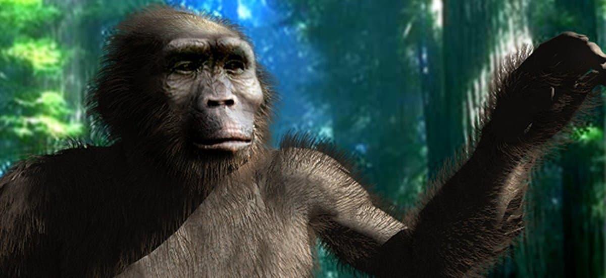 Die künstlerische Darstellung visualisiert, wie die Nussknackermenschen ausgesehen haben könnten – ihr Körper ähnelte noch weitgehend einem Affen, doch sie liefen aufrecht auf zwei Beinen.