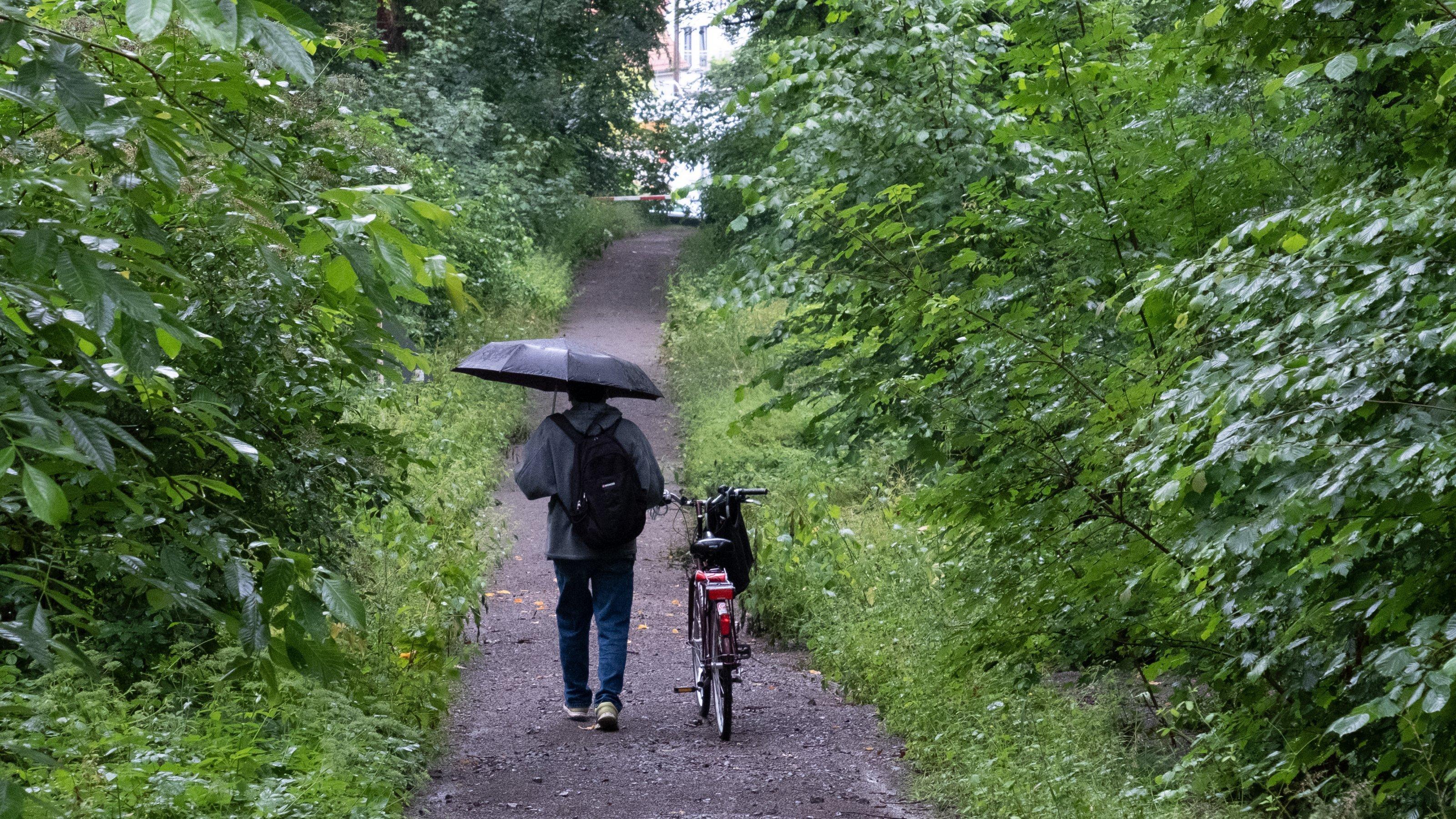 Ein Mann läuft bei anhaltendem Regen im Wald mit einem Regenschirm.