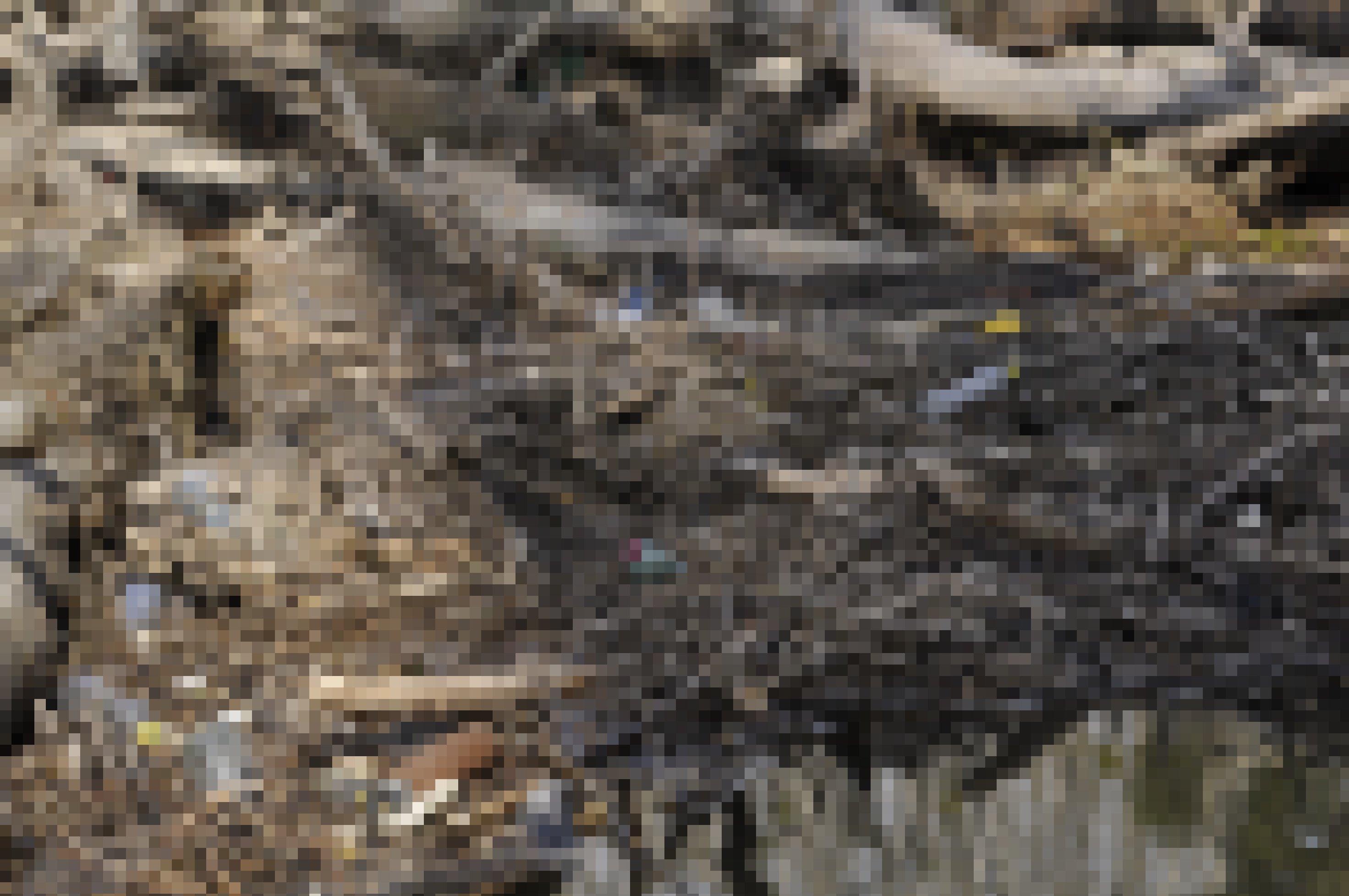 Angeschwemmtes Totholz mit Plastikabfällen dazwischen liegt an einer Wasserstelle in der Au