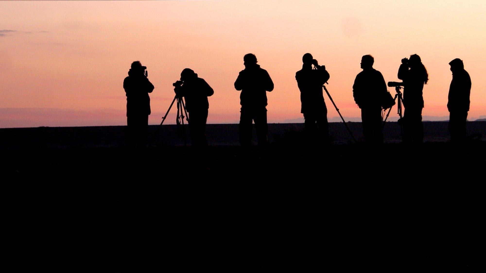 Eine Gruppe Vogelbeobachter im ersten Morgenlicht. Die Menschen sind nur als Silhouetten zu erkennen.