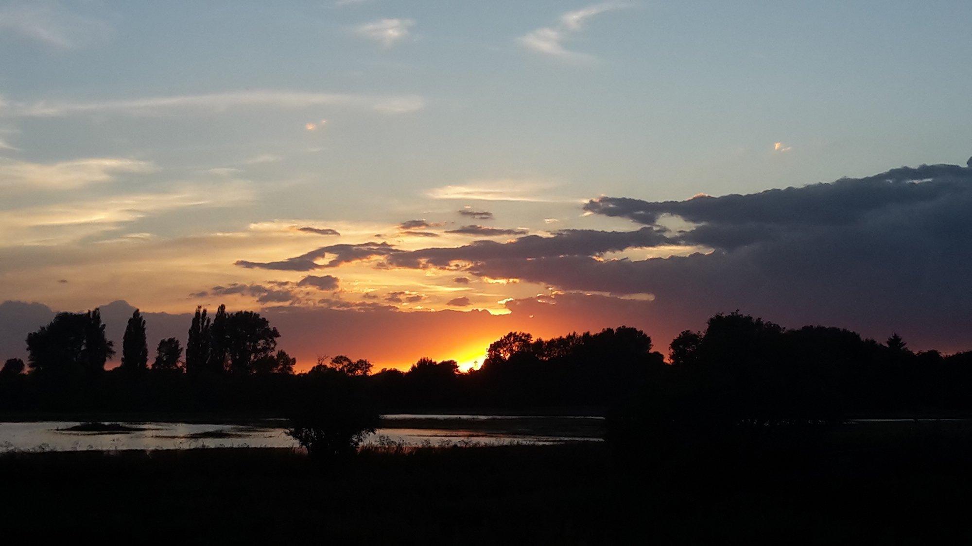 Aufnahme des Sonnenuntergangs vom Leineufer. Die Sonne geht hinter den Baumkronen unter.