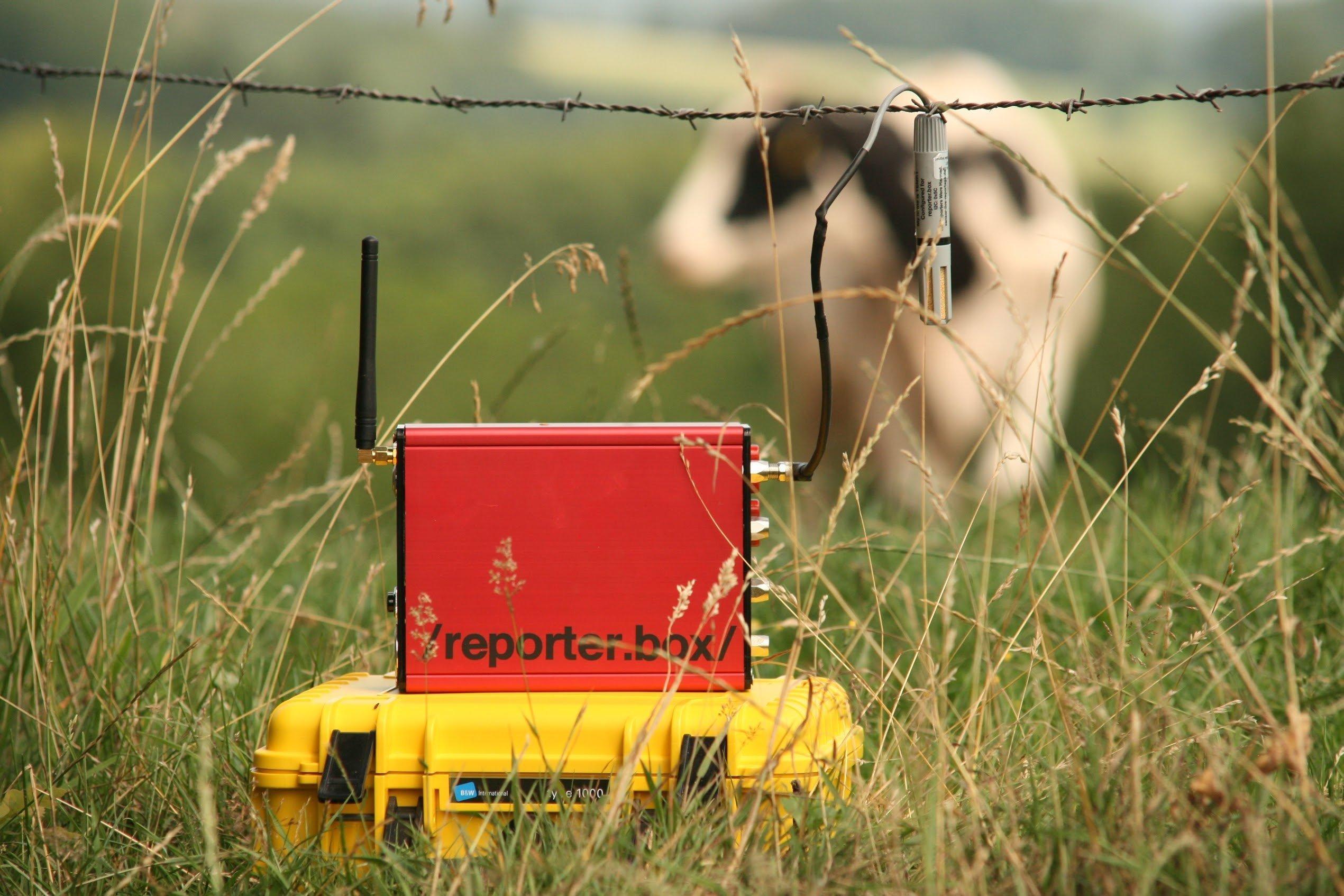 Reporterbox mit Sensoren vor Kuh