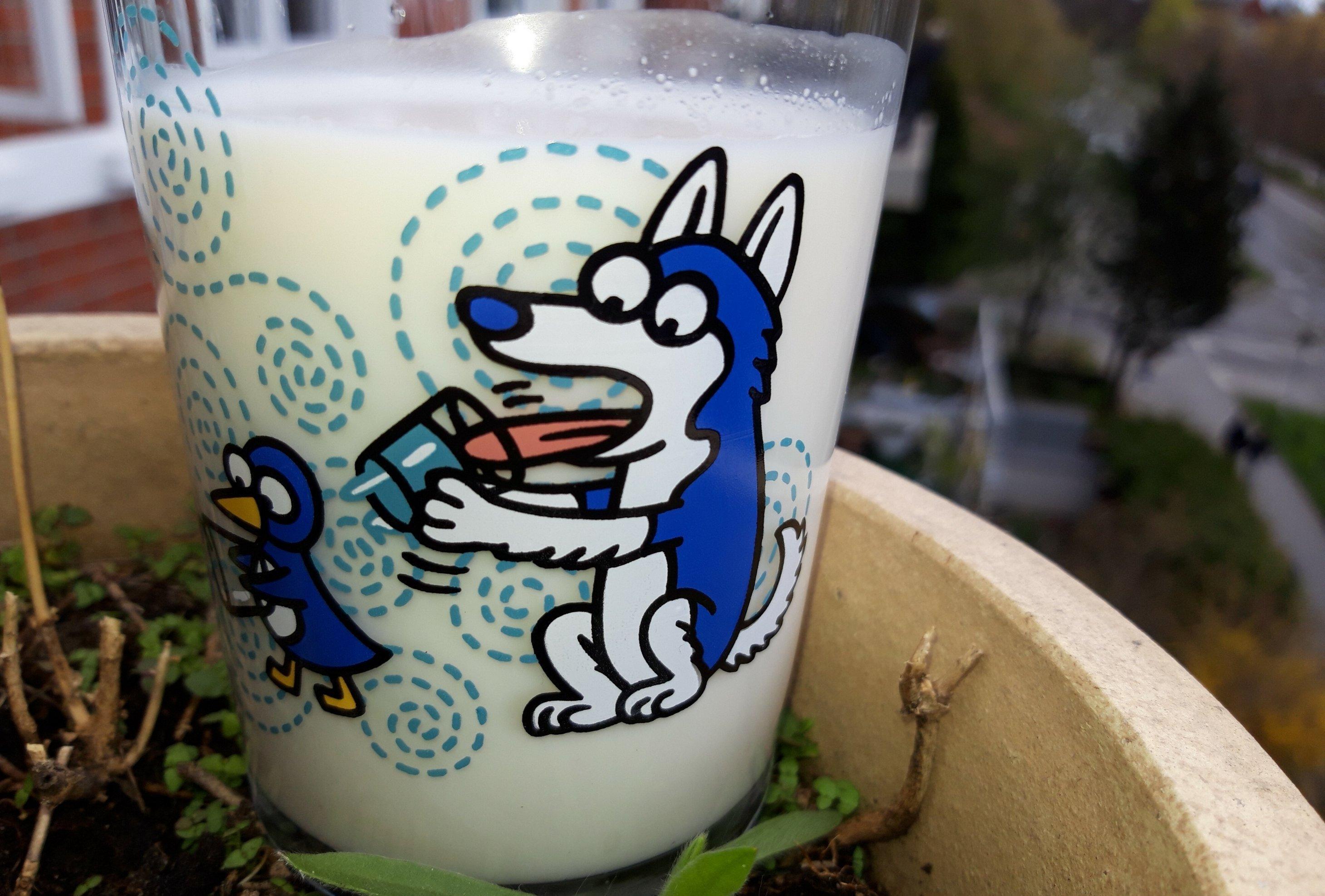 Ein fast volles Glas gefüllt mit Milch steht auf der Erde eines Blumentopfes.