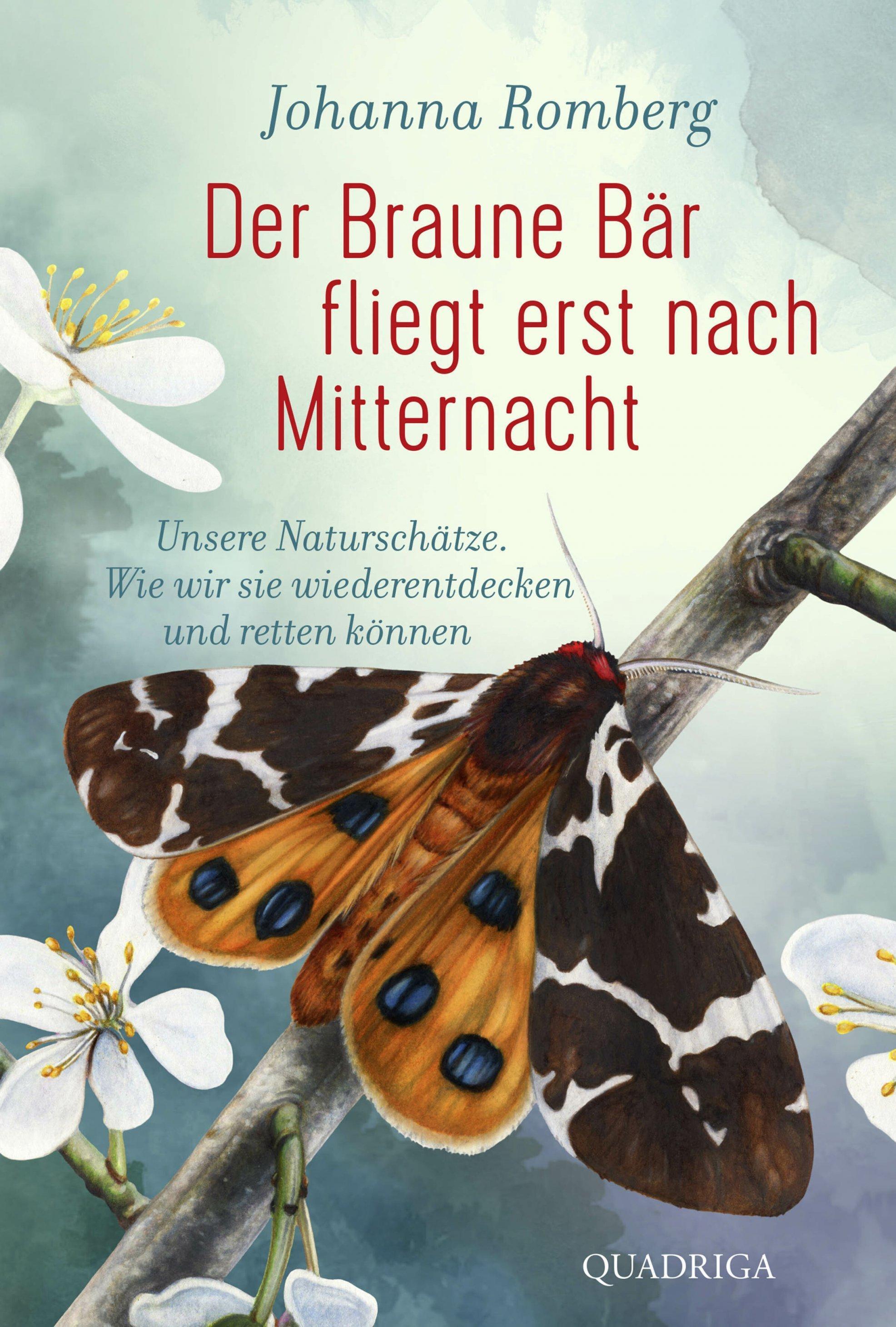 """Buchcover """"Der Braune Bär fliegt erst nach Mitternacht"""" zeigt den gezeichneten Nachtfalter Brauner Bär."""
