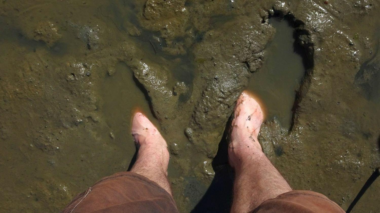 Füße, die im Watt eingesunken sind.