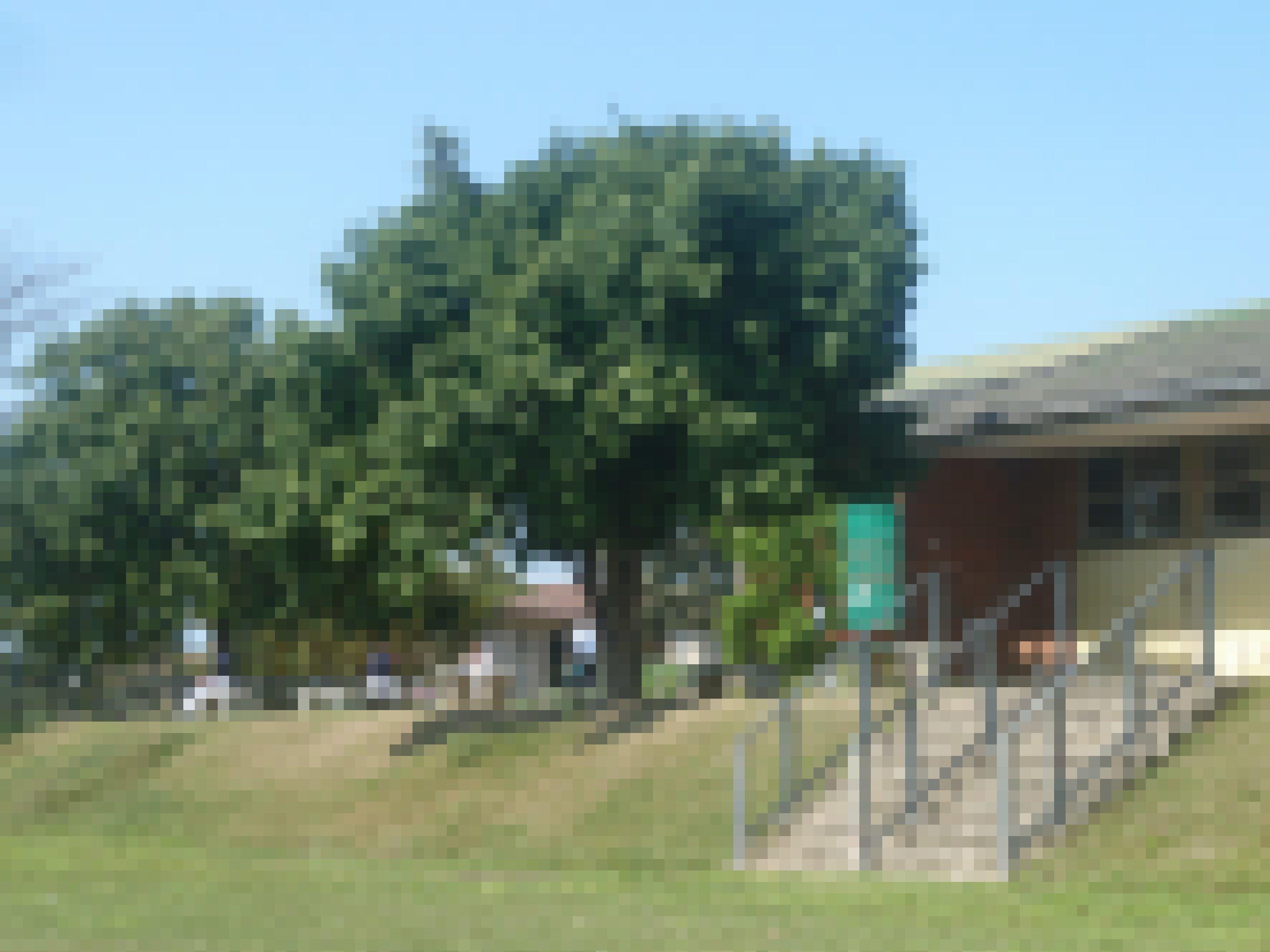 Die Schule ist vom Sportplatz und Schulhof aus zu sehen, Treppen führen neben einem Baum zu den Klassenräumen, davor stehen Wassertanks
