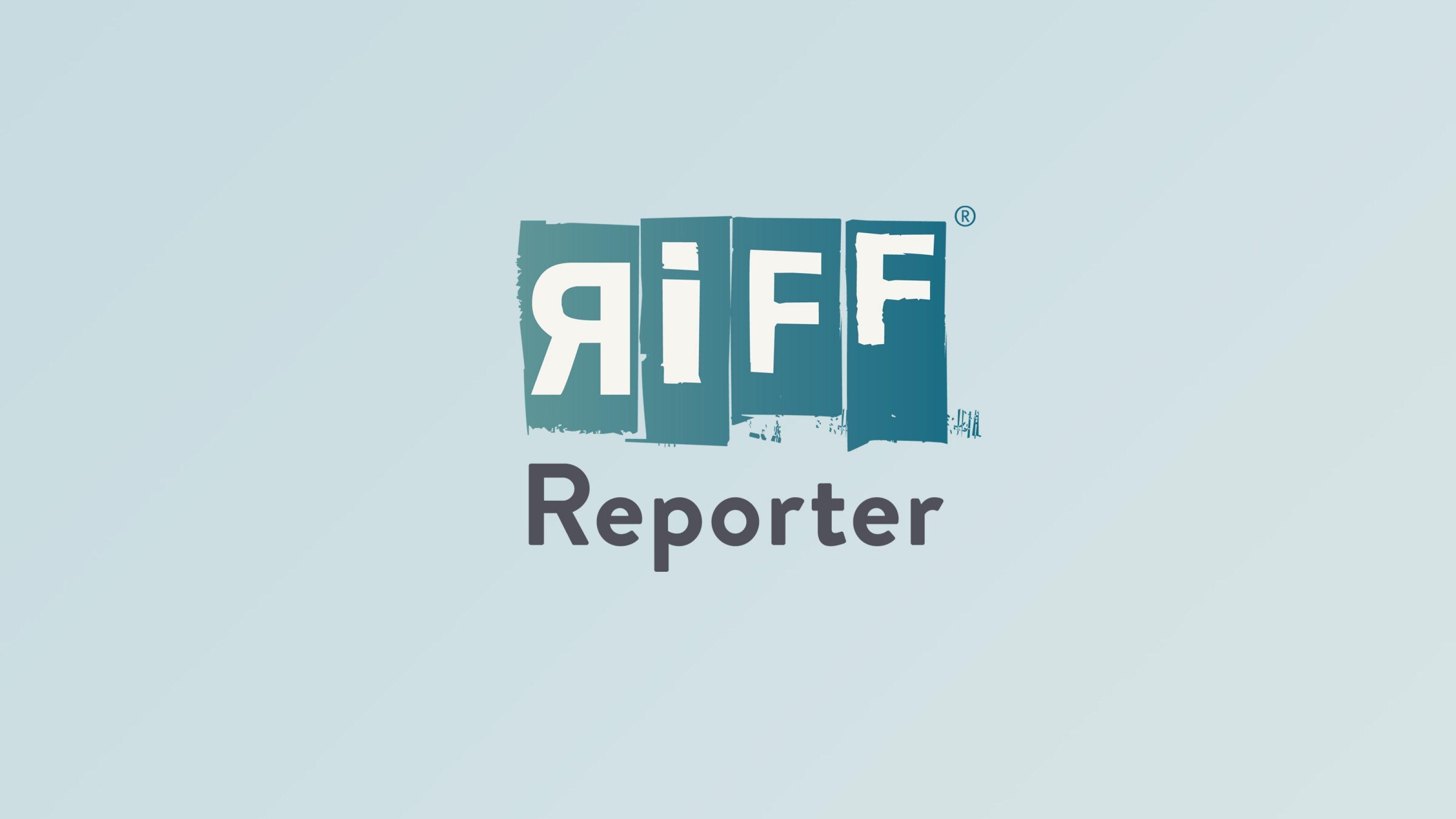 Ein Kea in Neuseeland, er fliegt und steht dabei quasi in der Luft.