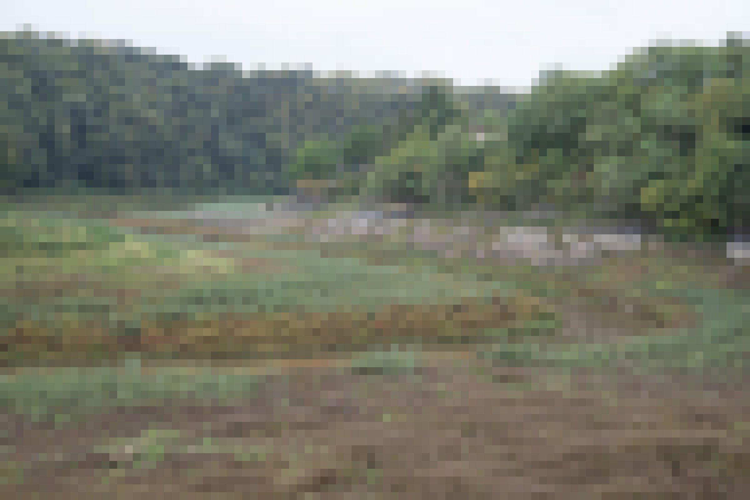 Tal mit kleinem Fluss und vielen Pflanzen