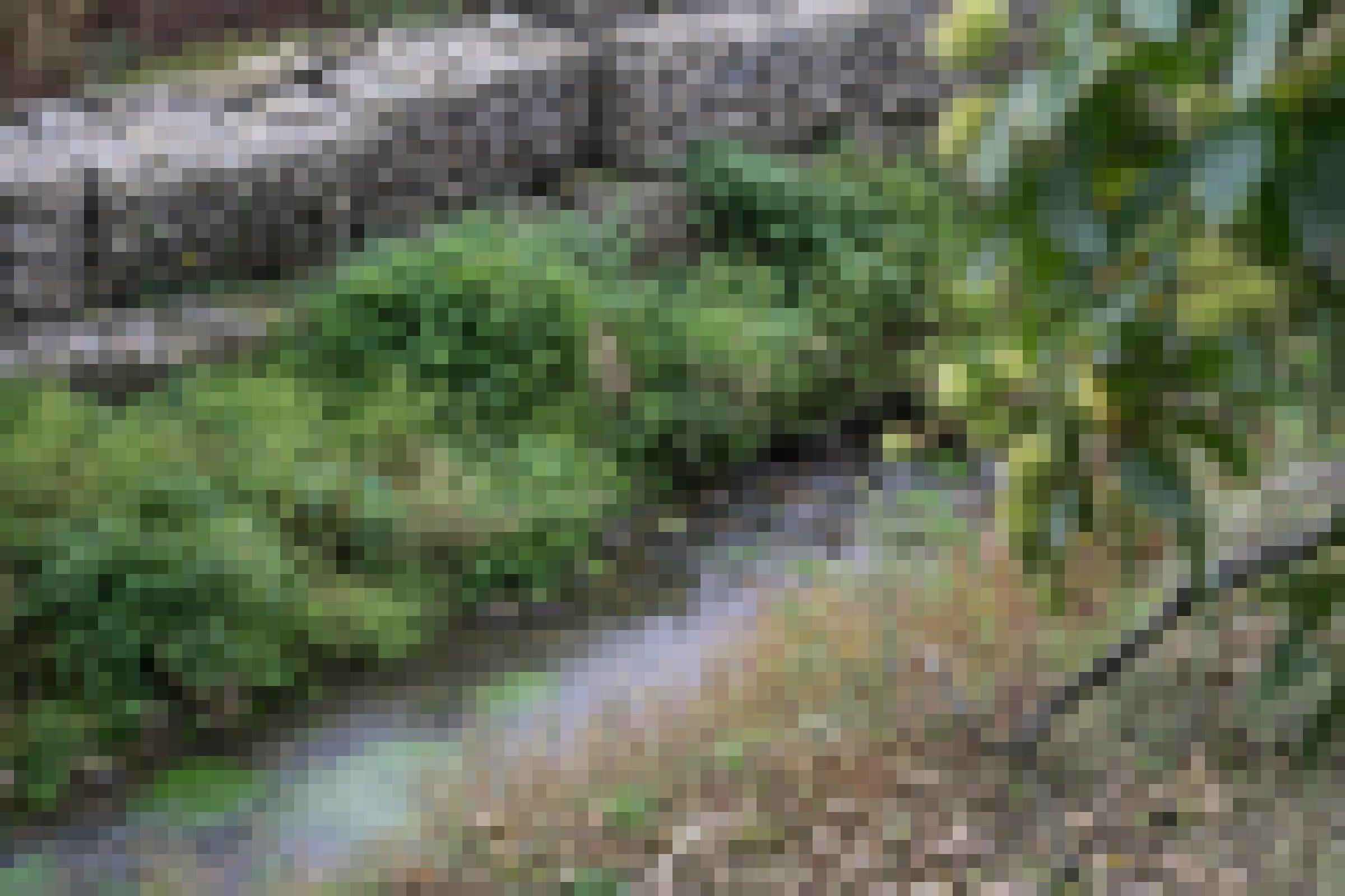 Metallkäfige mit Steinen gefüllt im Fluss, rundherum Bewuchs