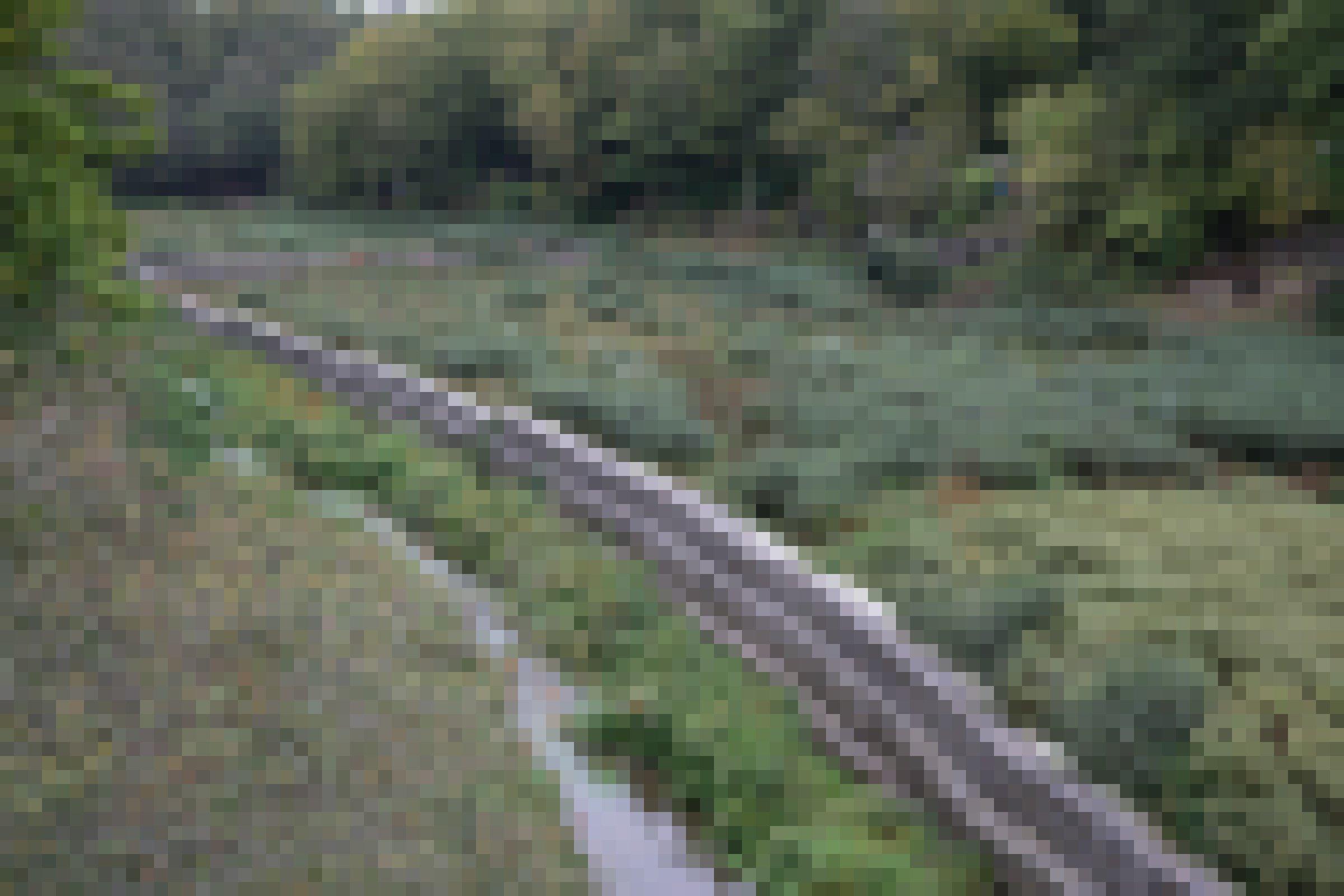 Flussbett mit Pflanzenbewuchs, rechts stehen Metallkäfige mit Steinen