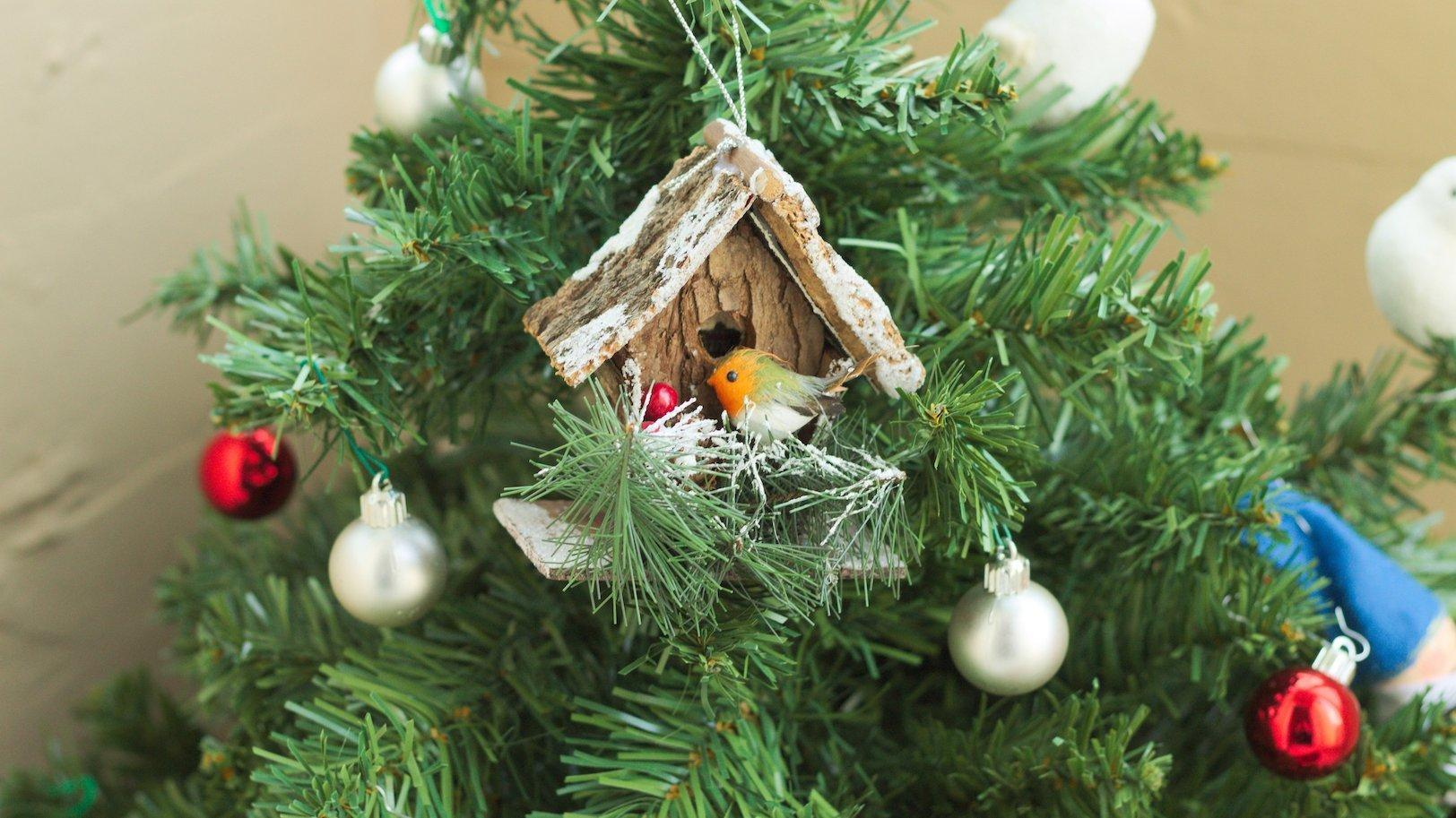 Ein kleines Vogelhäusschen im Adventszweig.
