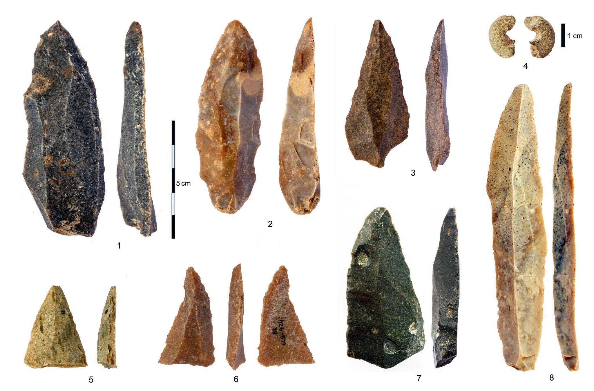 Auf hellem Hintergrund zu sehen sind verschiedene Klingen und Schaber aus Feuerstein, sowie rechts oben eine zerbrochene Perle aus Sandstein, die in der Mitte durchlocht ist. Die filigran zugeschlagenen Stein-Objekte zeigen Farbtöne von fast schwarz, über grünlich, orange, rötlich und gelb. Sie sind rund 45.000Jahre alt, stammen aus der Bacho-Kiro-Höhle in Bulgarien und wurden von den ersten modernen Menschen in Europa hergestellt.