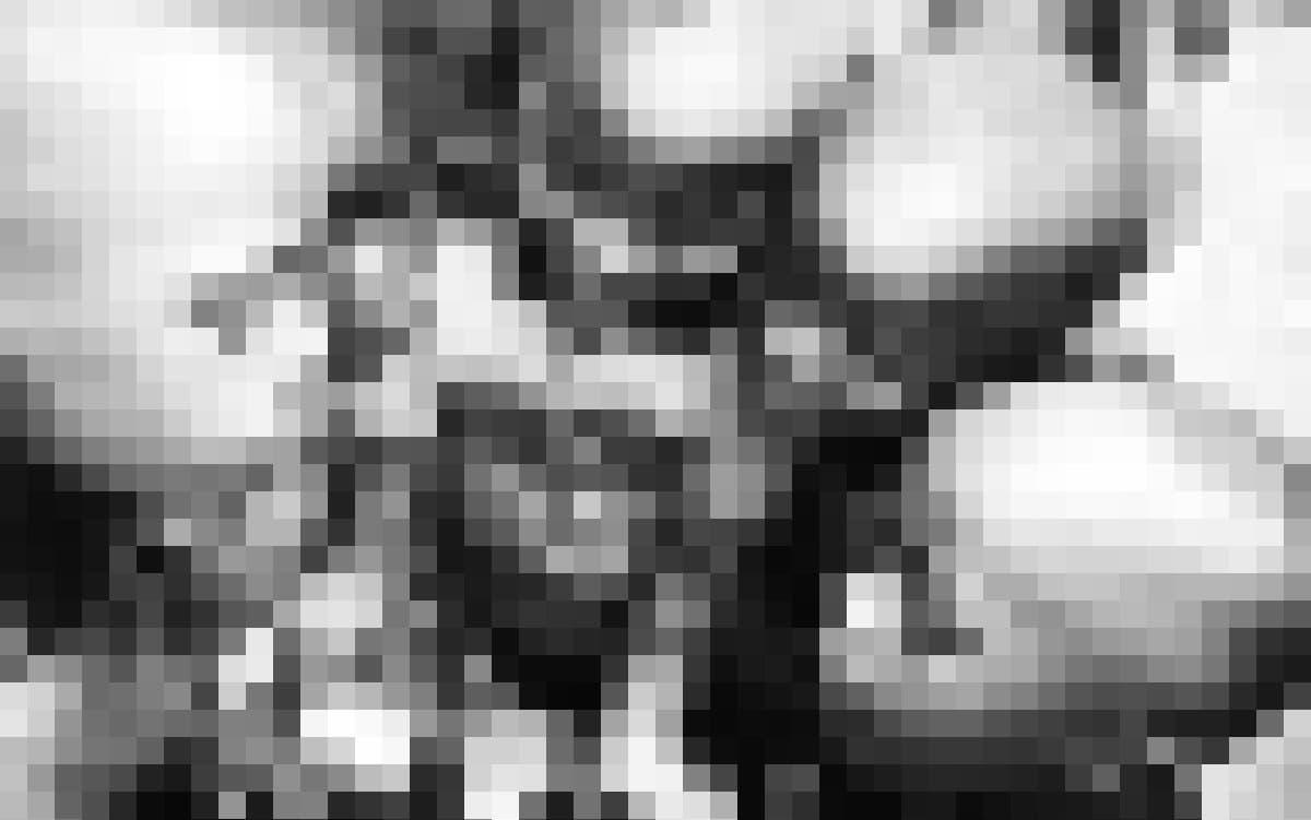 5Kinder stehen kreisförmig um eine DSLR-Kamera herum und betrachten neugierig, was darauf zu sehen ist.