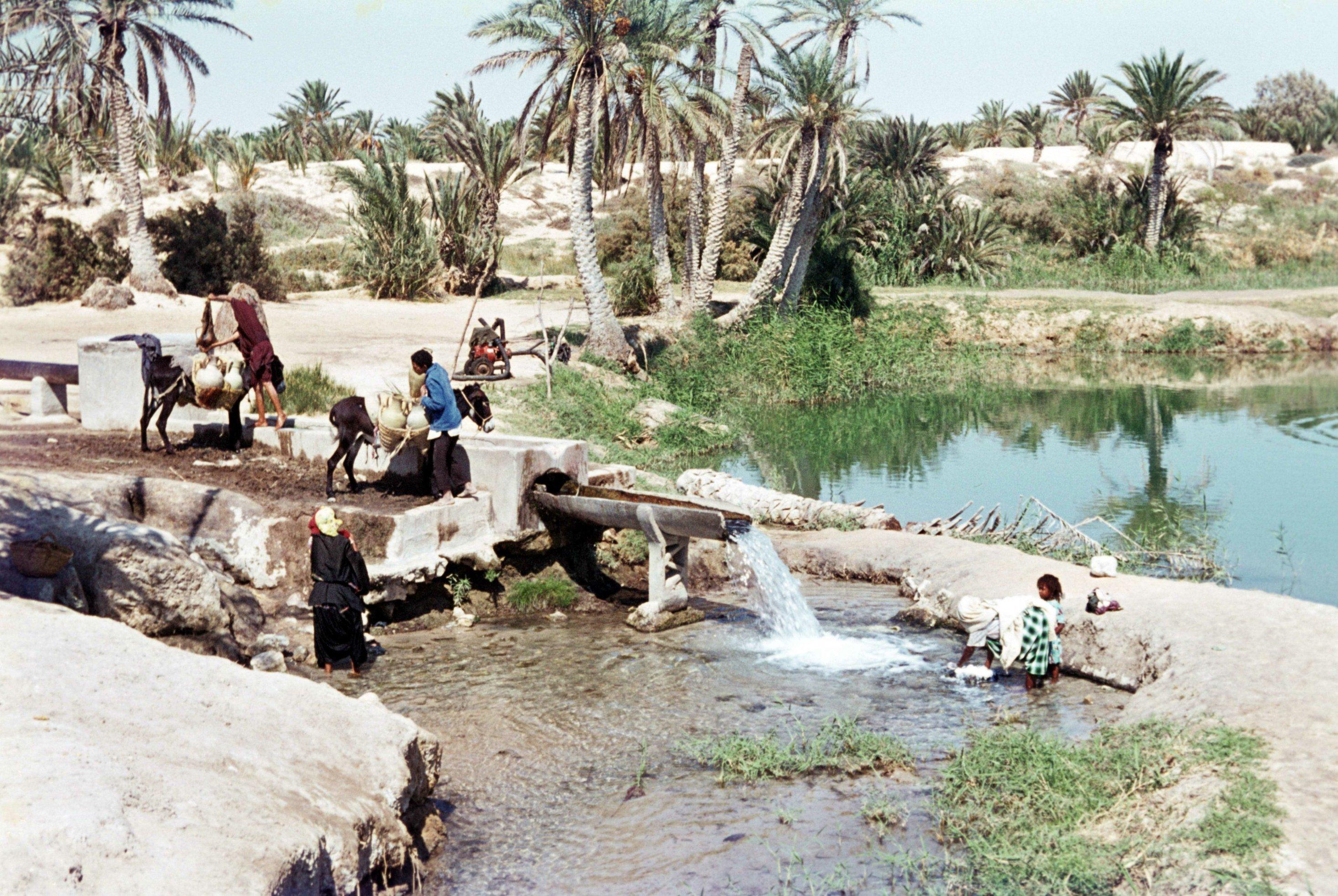 Historisches Foto: Tunesische Familie besorgt sich ihren Wasservorrat an einer Quelle in der Oase von Kebili. Ein Esel trägt Wasserkanister, mehrere Personen sitzen am Rand der Quelle.