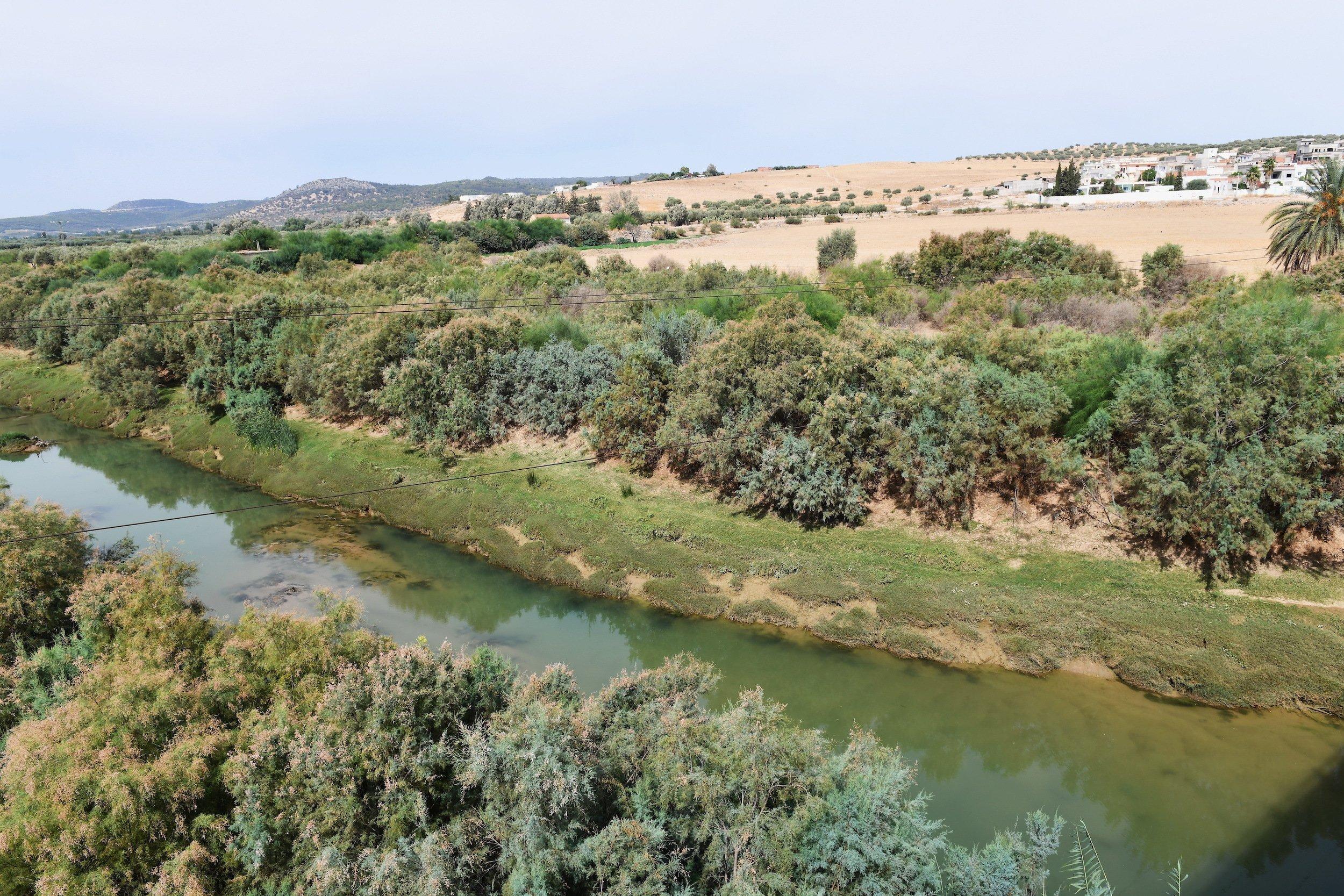 Siedlung im Hintergrund des Oued Medjerda