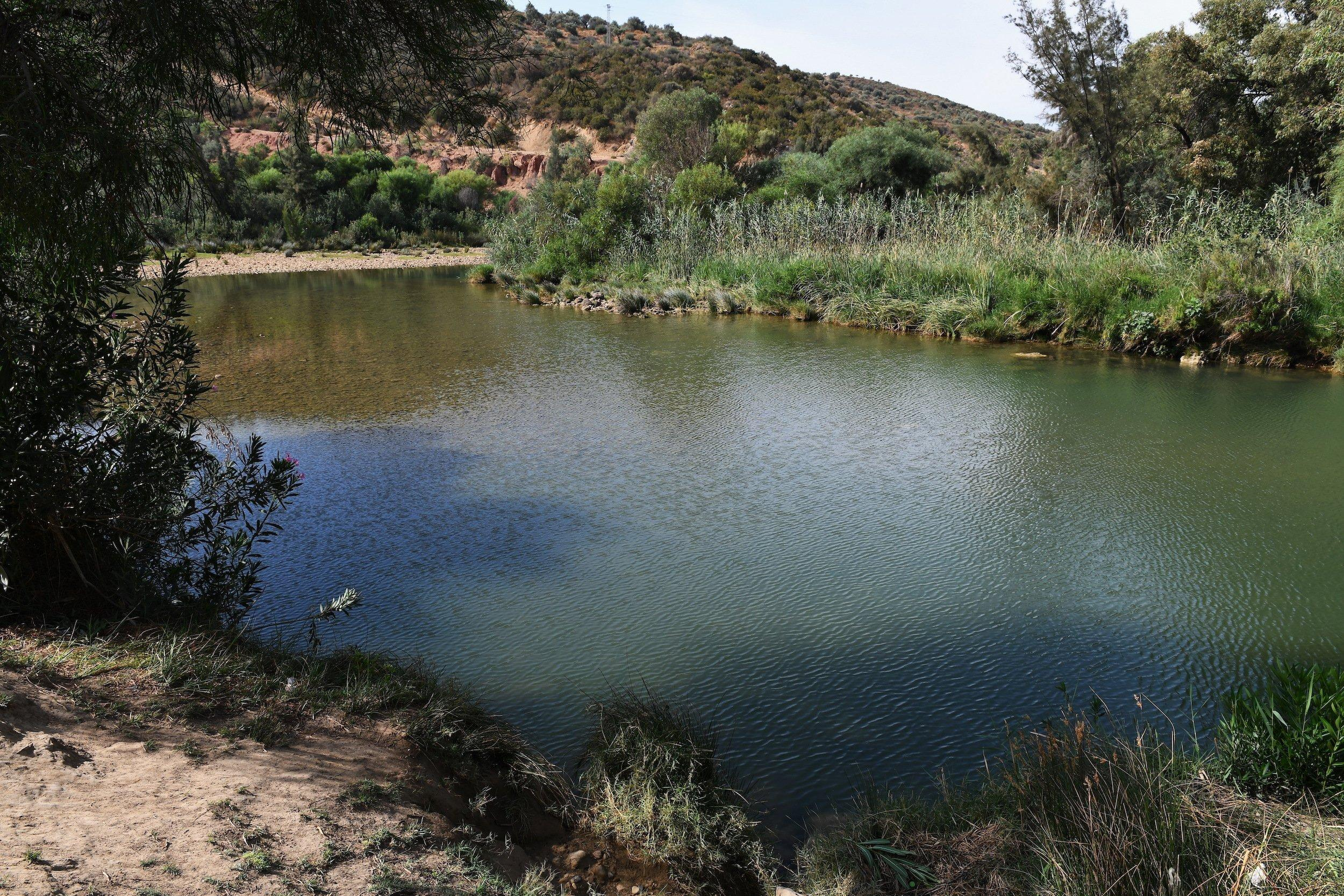 Landschaft am Oued Medjerda