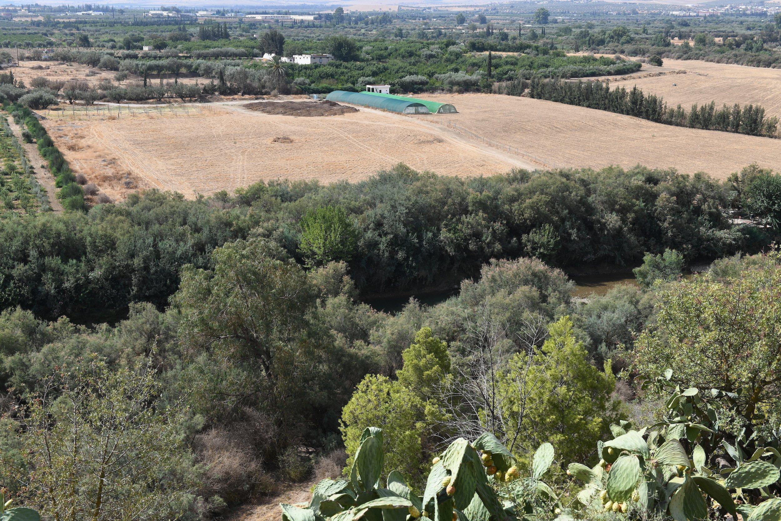 Felder direkt am Flusslauf des Oued Medjerda