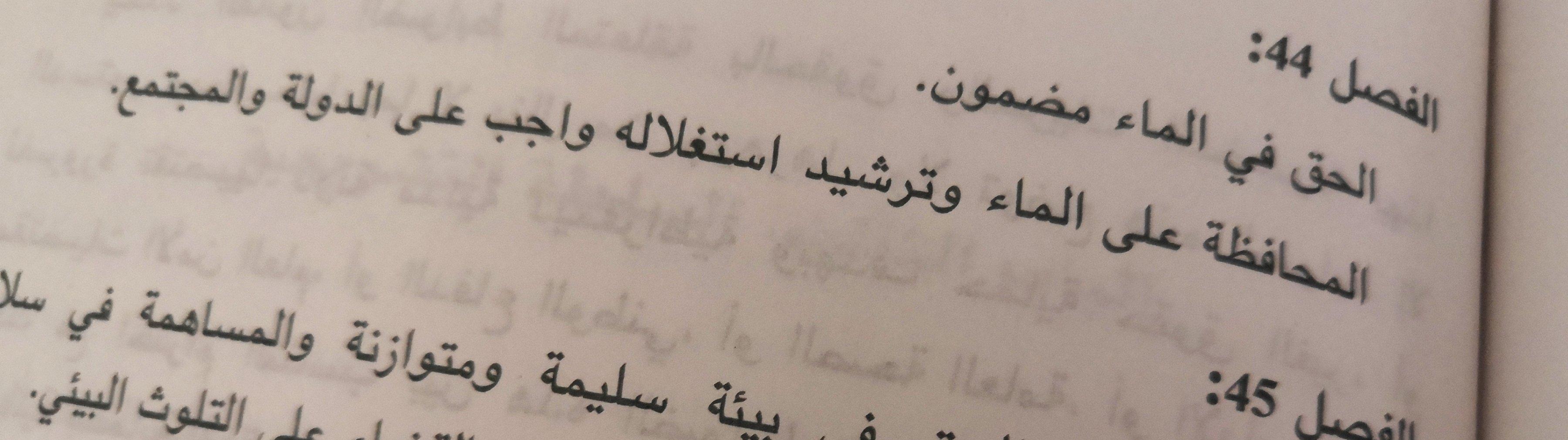Auszug aus der tunesischen Verfassung, Artikel 44