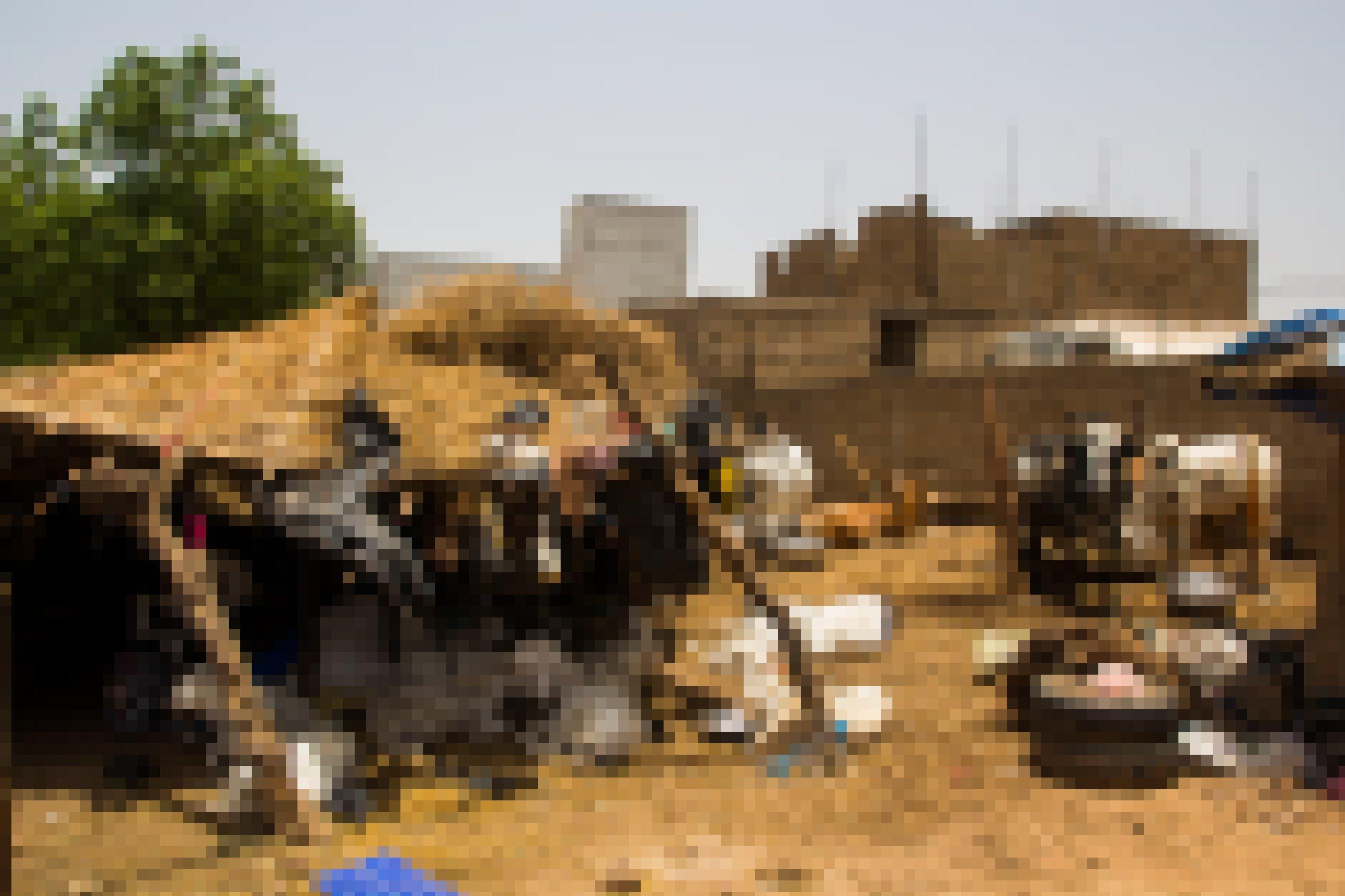 Kühe und Schafe sind auf einem Viehmarkt in Mali. Die Schafe liegen unter einer Überdachung aus Stroh und Ästen.