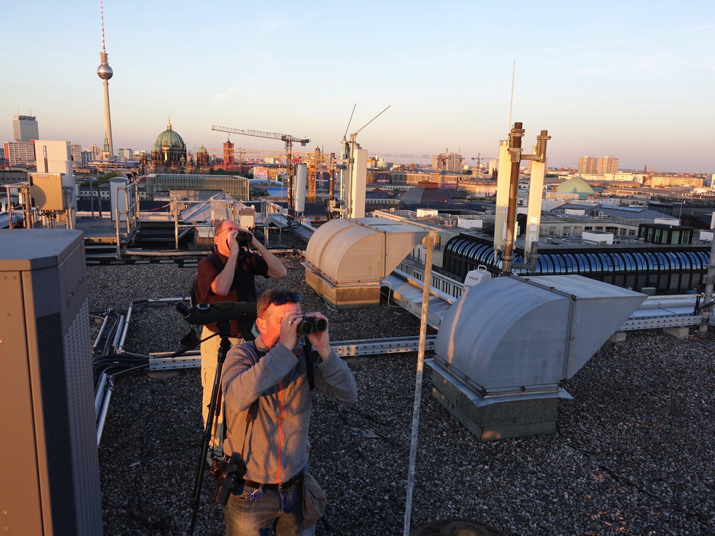 Zwei Vogelbeobachter auf Dach in Berlin.