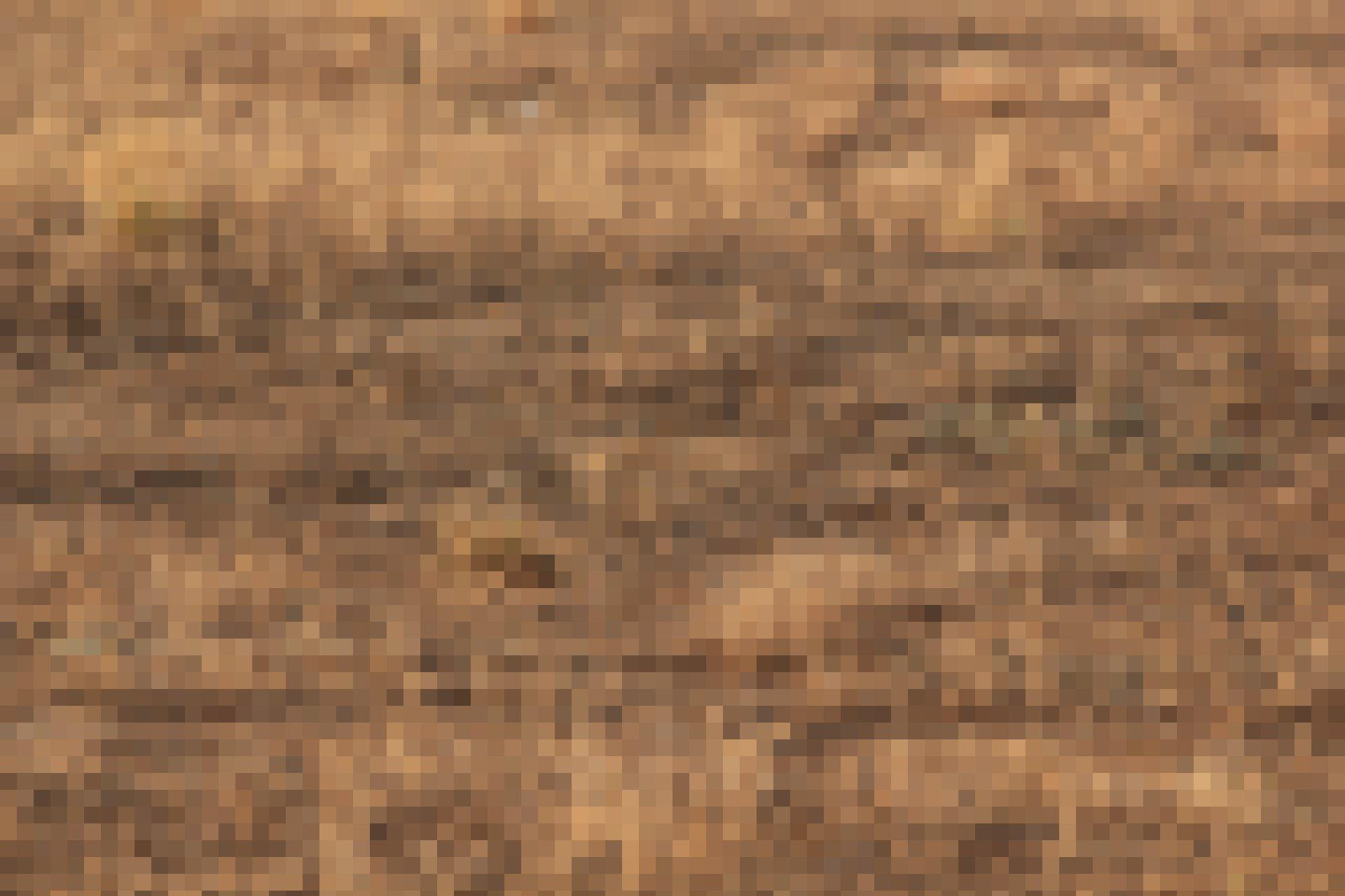 Trockener Grasboden mit Eule