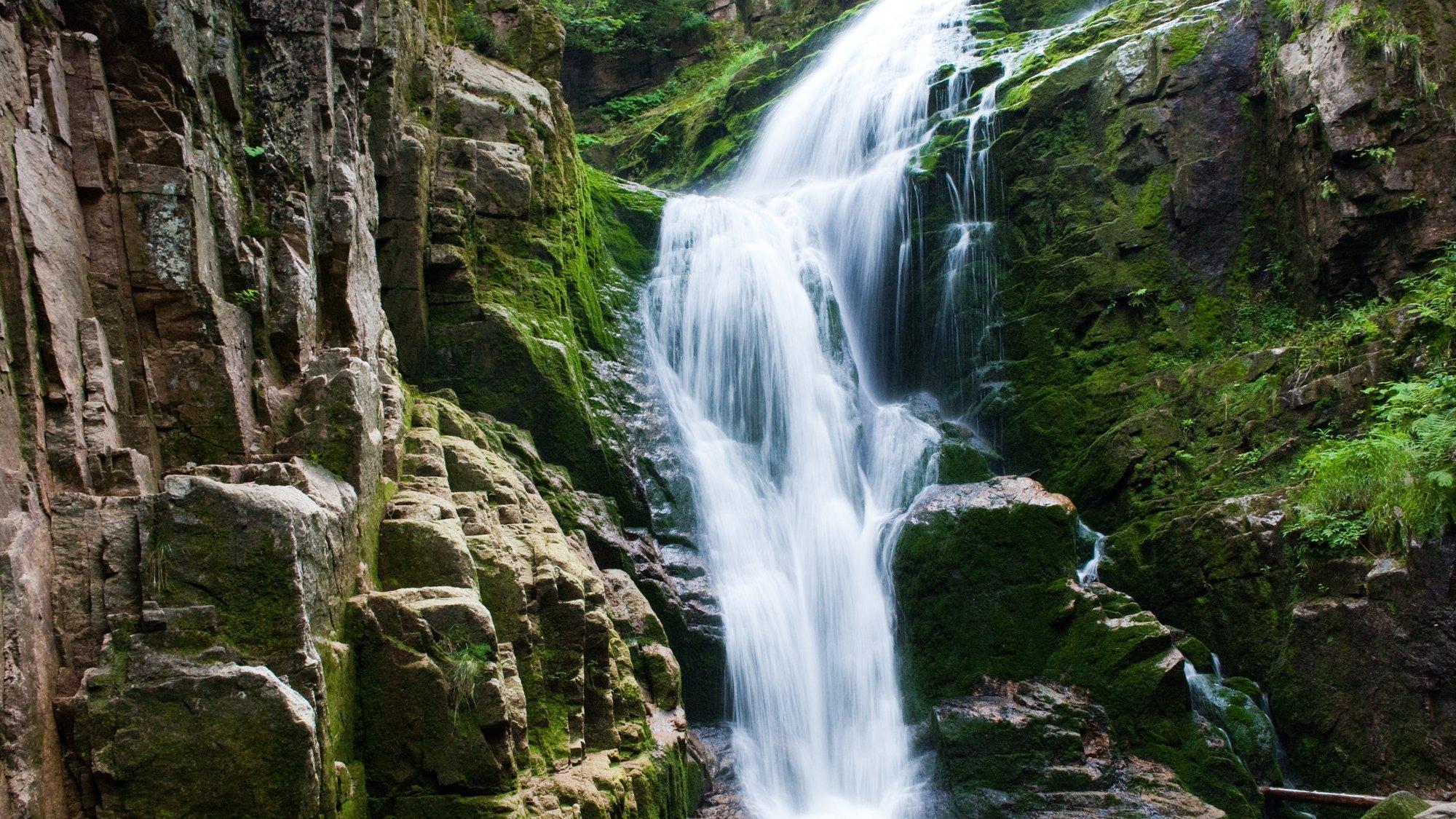 Ein Wasserfall im Wald
