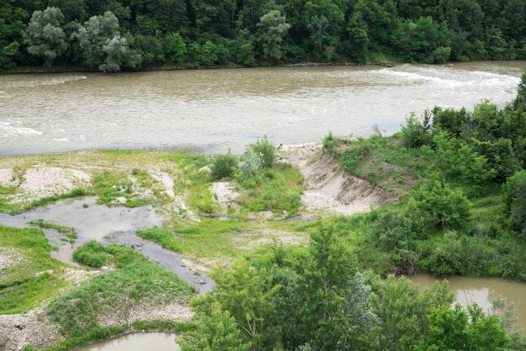 Fluss Mur mit offenem Uferbereich und Pflanzen