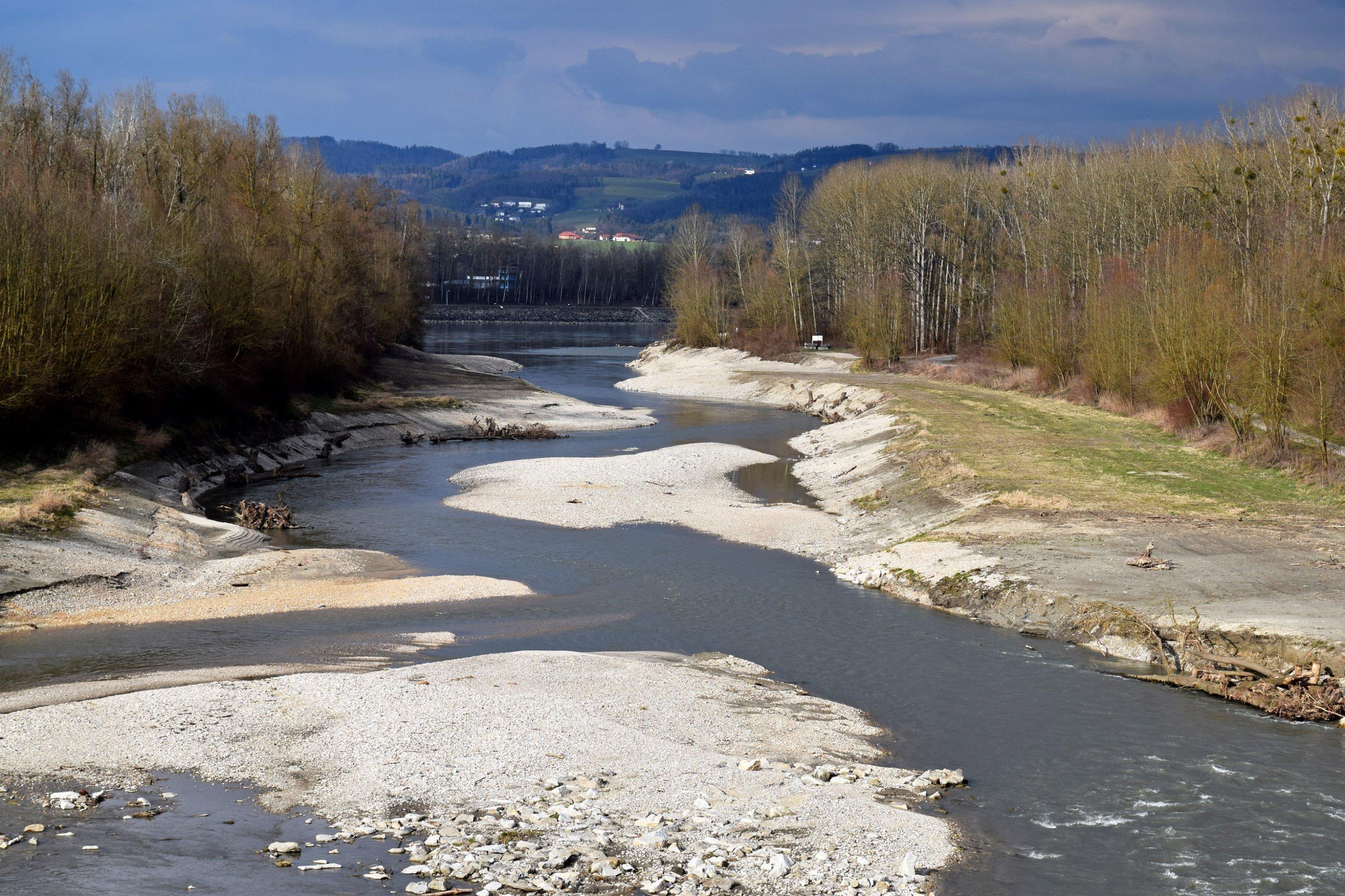 gewundener Flussarm mit Bäumen und Sträuchern