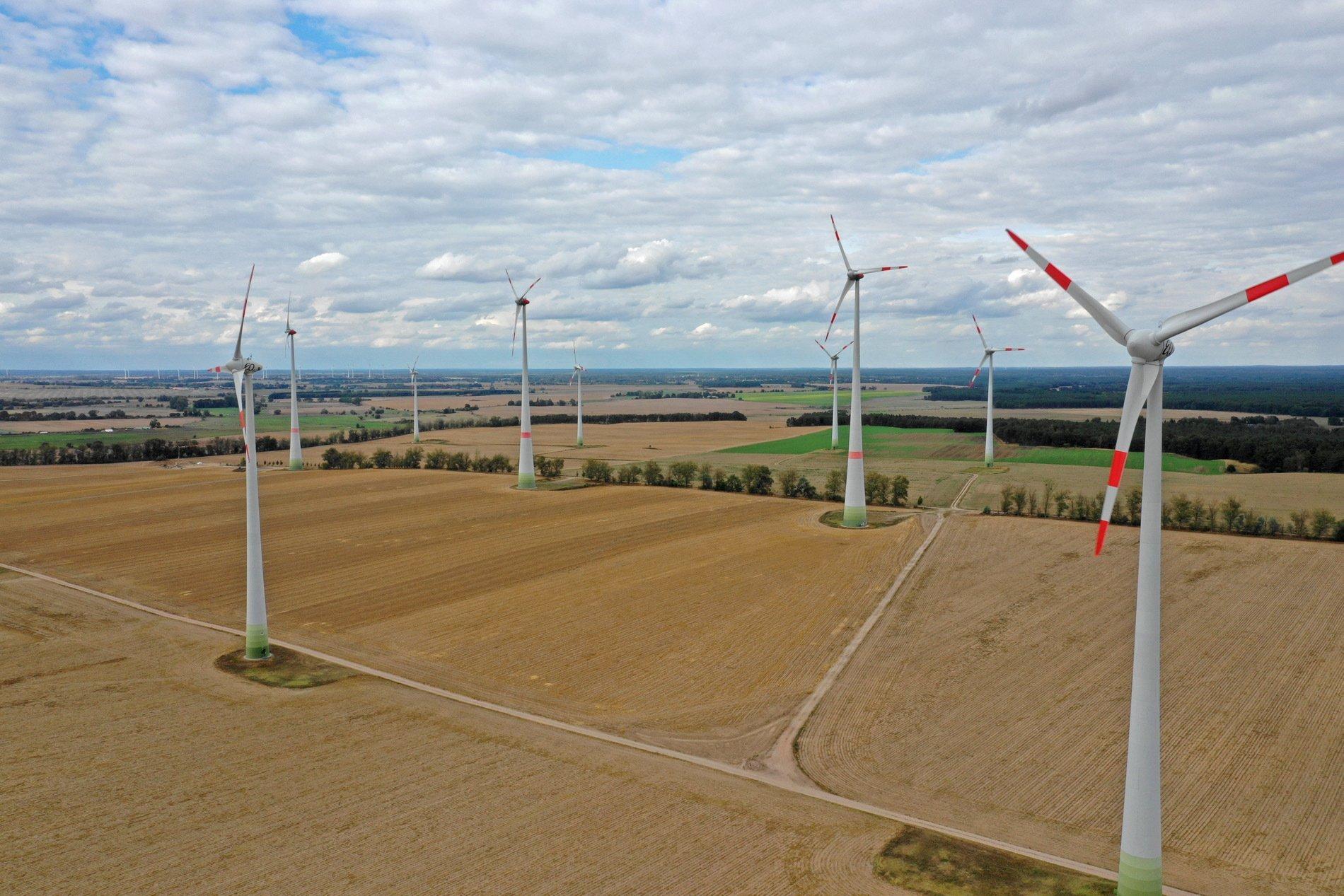 Ein Windpark in der Agrarlandschaft.