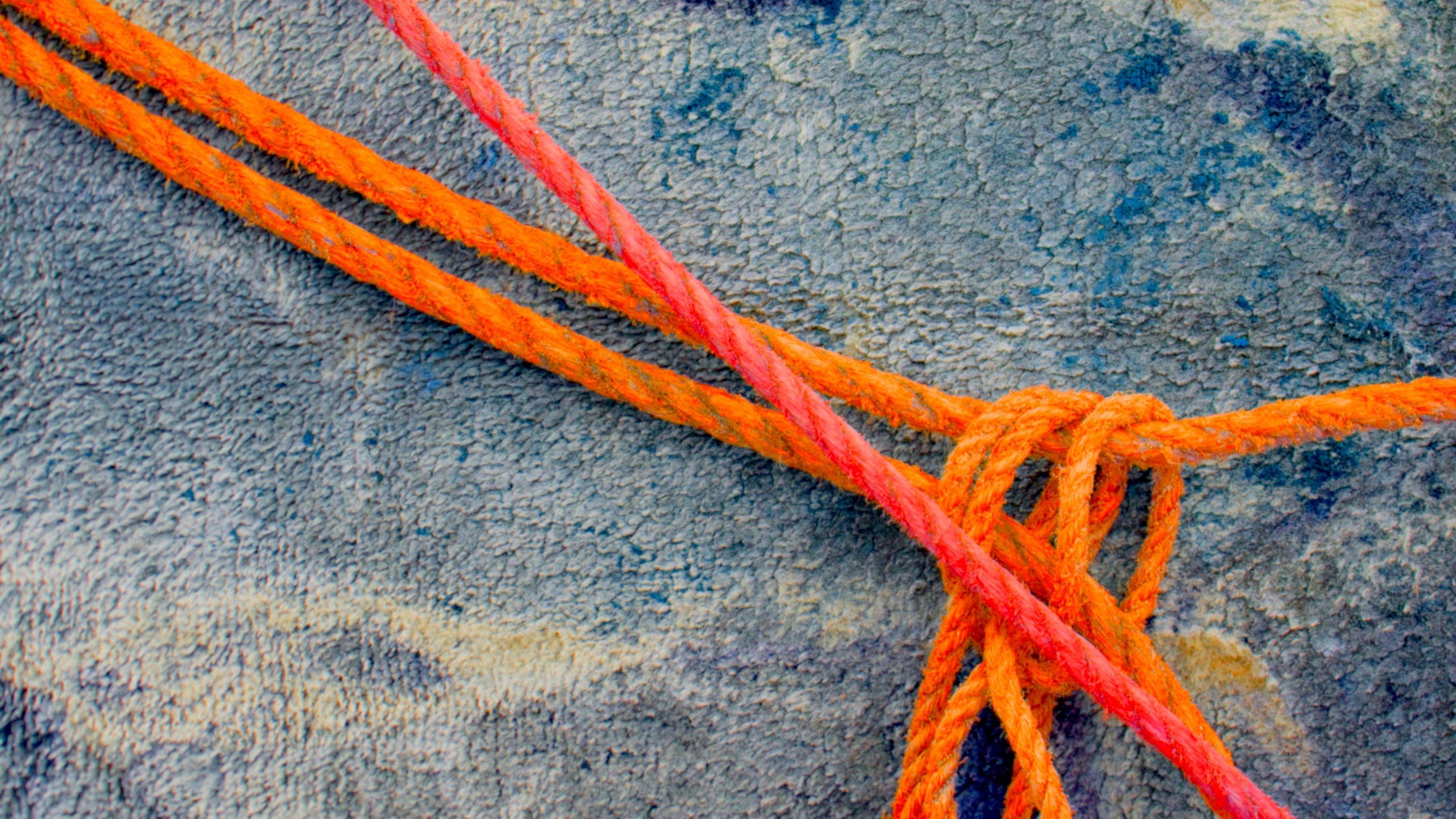 """Header der Rubrik """"Wissen verknüpfen"""": Orange-Rote Seile, die miteinander verknüpft sind"""