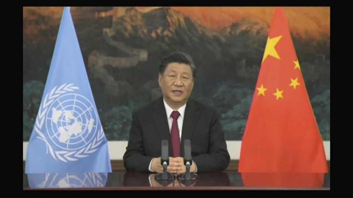 """""""Wir übernehmen die Führung"""" - China setzt Akzente bei Weltnaturgipfel"""