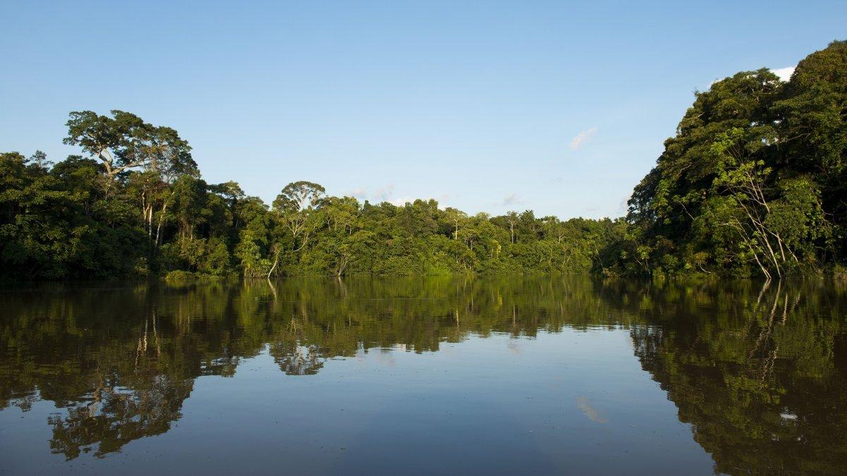 Der Nationalpark Yaguas in Peru ist erst drei Jahre alt, aber ist jetzt schon ein Erfolg. Was ist sein Geheimnis?